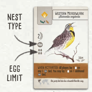 Nest type and Egg limit on bird card - Wingspan